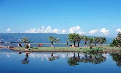 চলুন টাঙ্গুয়ার হাওর থেকে ঘুরে আসি