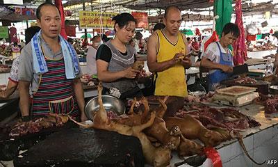 করোনা ভাইরাস: বন্ধ হচ্ছে চীনের সেই মাংসের বাজার