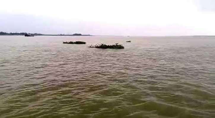 ঘূর্ণিঝড়ের প্রভাবে পানি বৃদ্ধি, ডুবে মারা গেল ৩৭৫টি ভেড়া