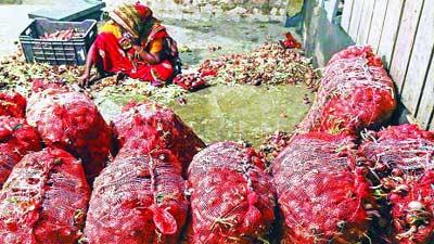আমদানি করা পেঁয়াজ ফেলে দেয়া হচ্ছে খালে-নদীতে